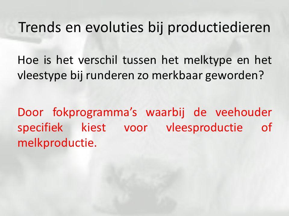 Trends en evoluties bij productiedieren Hoe is het verschil tussen het melktype en het vleestype bij runderen zo merkbaar geworden? Door fokprogramma'