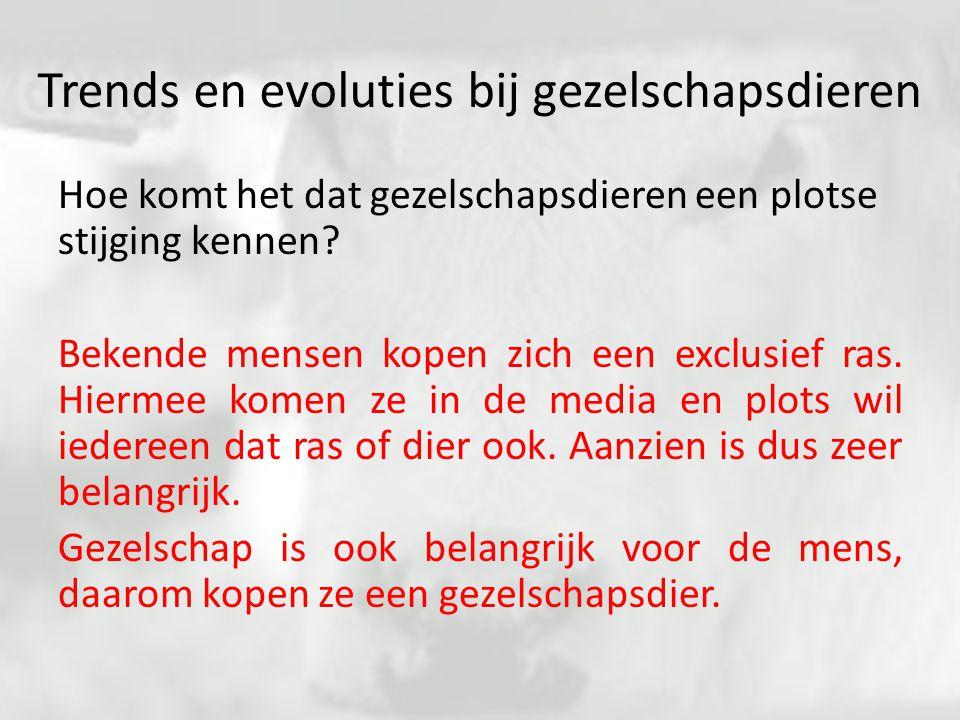 Trends en evoluties bij gezelschapsdieren Hoe komt het dat gezelschapsdieren een plotse stijging kennen? Bekende mensen kopen zich een exclusief ras.