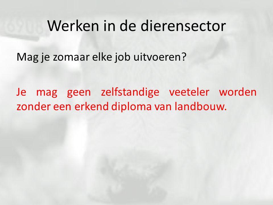 Werken in de dierensector Mag je zomaar elke job uitvoeren? Je mag geen zelfstandige veeteler worden zonder een erkend diploma van landbouw.