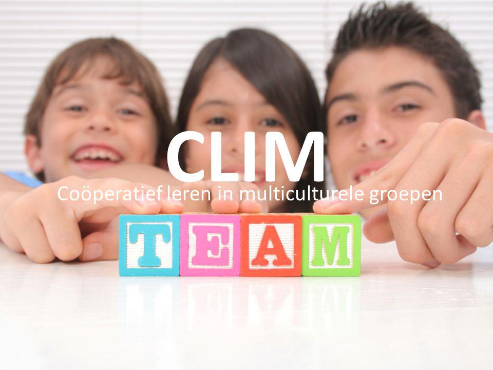 CLIM Coöperatief leren in multiculturele groepen