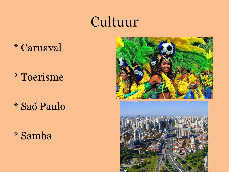 Cultuur * Carnaval * Toerisme * Saõ Paulo * Samba