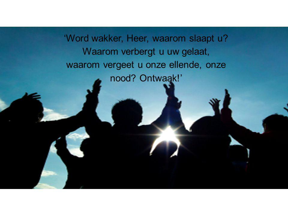 'Word wakker, Heer, waarom slaapt u? Waarom verbergt u uw gelaat, waarom vergeet u onze ellende, onze nood? Ontwaak!'