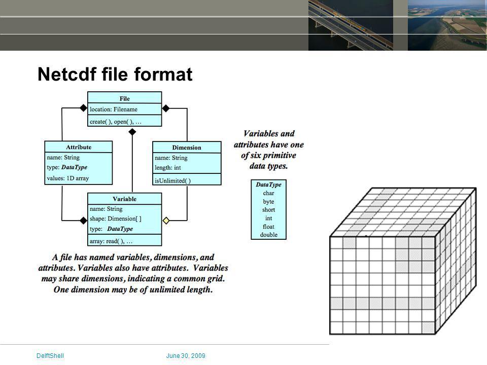 June 30, 2009DelftShell Netcdf file format