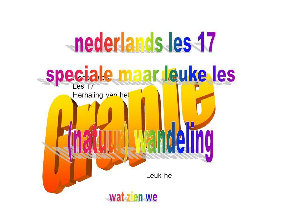 Nederlands Les 17 Herhaling van het hele jaar Leuk he