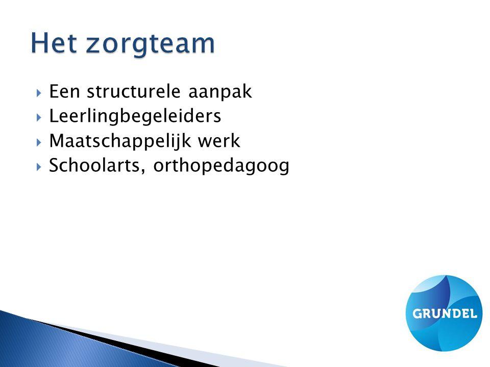  Een structurele aanpak  Leerlingbegeleiders  Maatschappelijk werk  Schoolarts, orthopedagoog