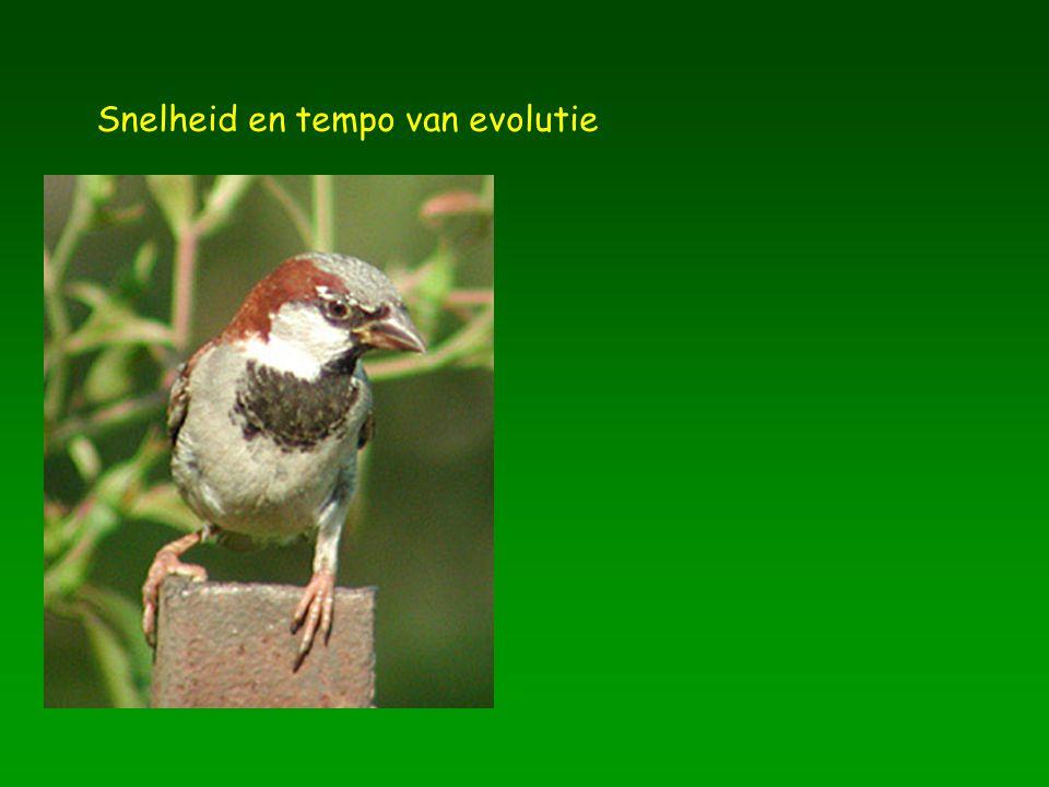 Snelheid en tempo van evolutie