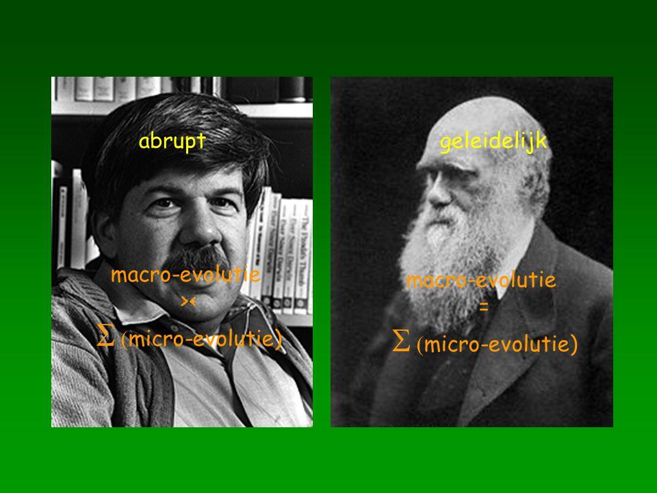 abruptgeleidelijk macro-evolutie ><   micro-evolutie) macro-evolutie =   micro-evolutie)