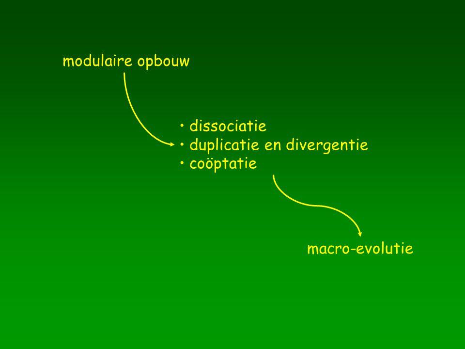 modulaire opbouw dissociatie duplicatie en divergentie coöptatie macro-evolutie