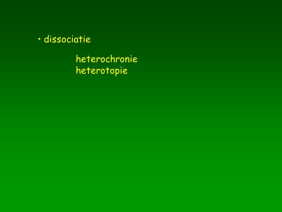 dissociatie heterochronie heterotopie