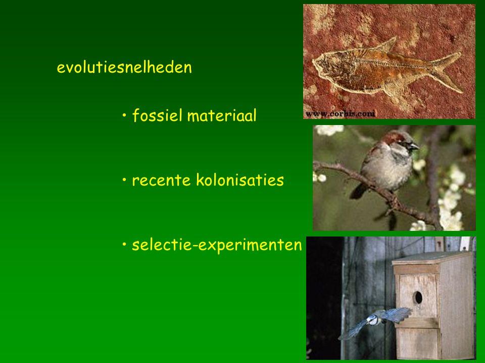 evolutiesnelheden fossiel materiaal recente kolonisaties selectie-experimenten