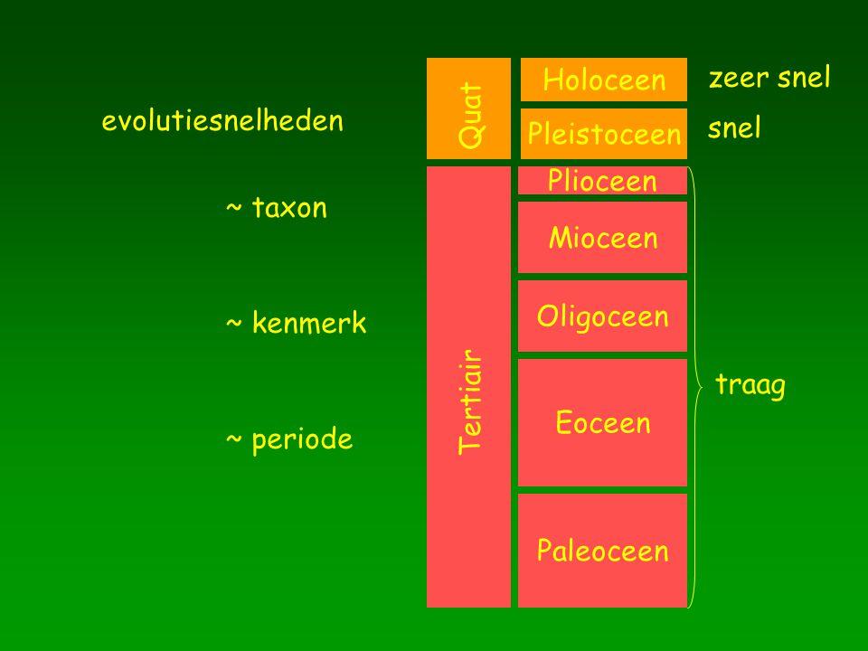 evolutiesnelheden ~ taxon ~ kenmerk ~ periode Paleoceen Eoceen Oligoceen Mioceen Plioceen Holoceen Pleistoceen Tertiair Quat traag snel zeer snel