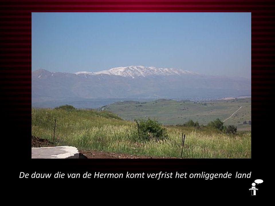 De dauw die van de Hermon komt verfrist het omliggende land