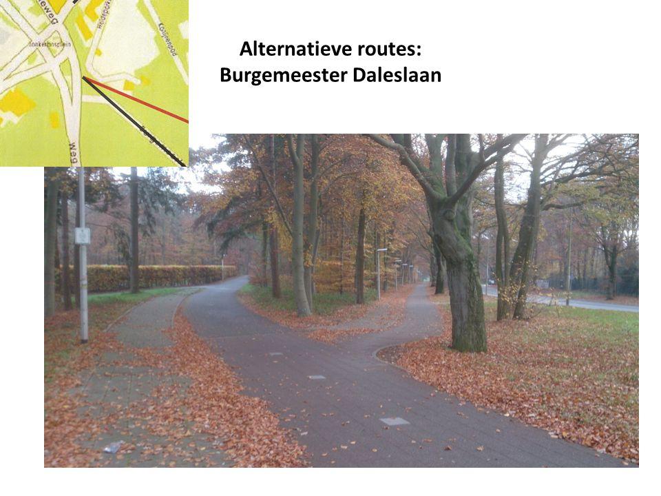 Alternatieve routes: Burgemeester Daleslaan