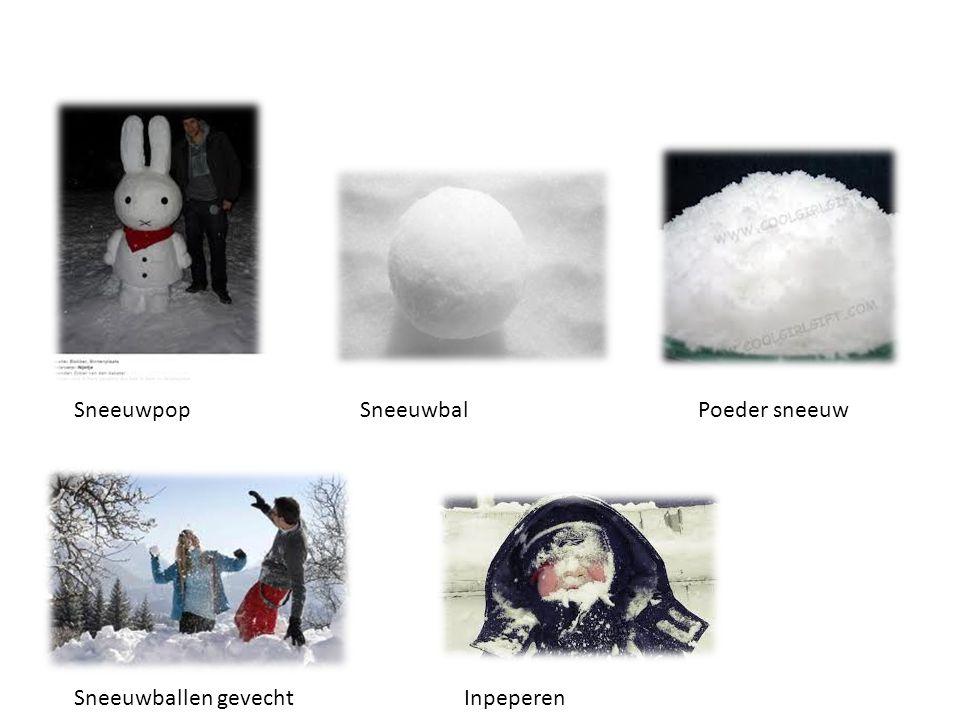 Sneeuwpop Sneeuwbal Poeder sneeuw Sneeuwballen gevecht Inpeperen