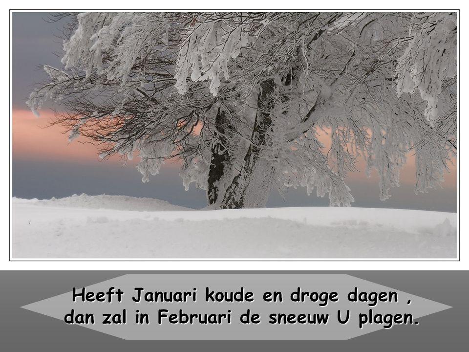 Heeft Januari koude en droge dagen, dan zal in Februari de sneeuw U plagen.