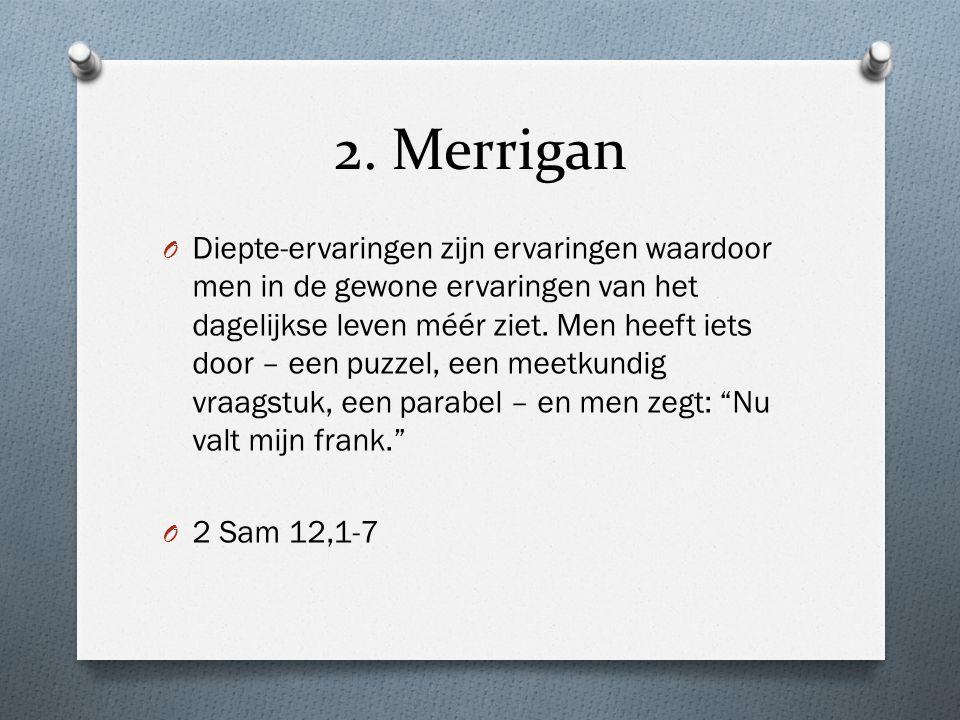 2. Merrigan O Diepte-ervaringen zijn ervaringen waardoor men in de gewone ervaringen van het dagelijkse leven méér ziet. Men heeft iets door – een puz