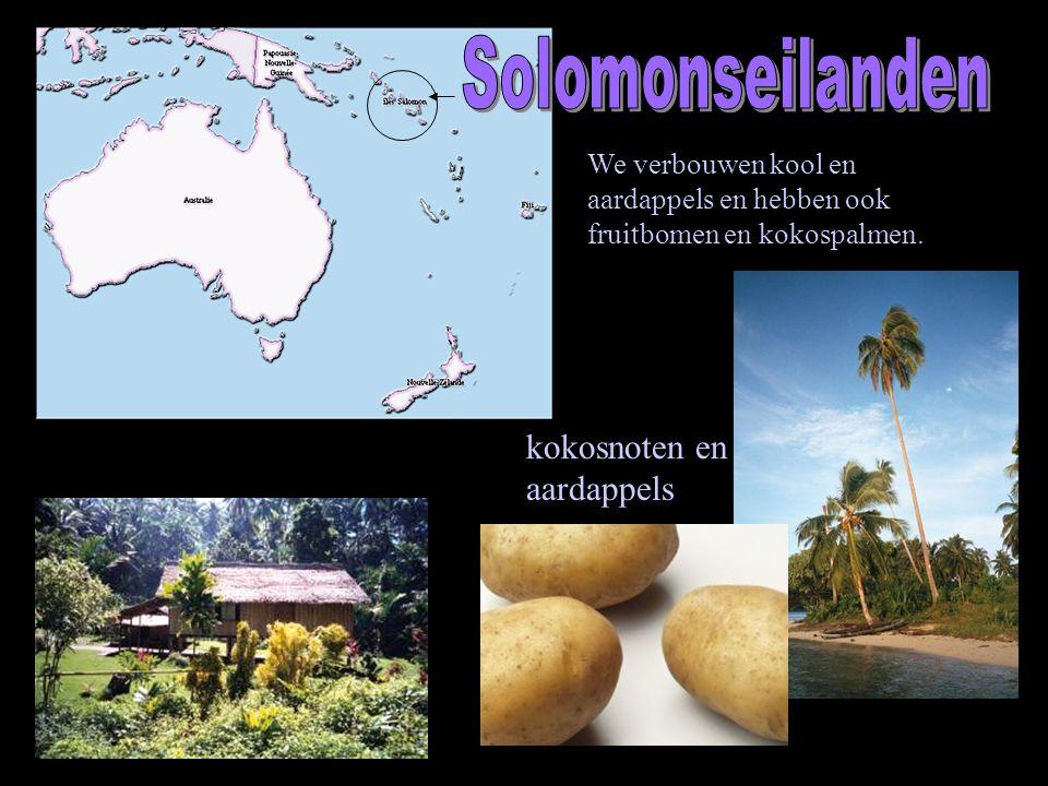 We verbouwen kool en aardappels en hebben ook fruitbomen en kokospalmen. kokosnoten en aardappels