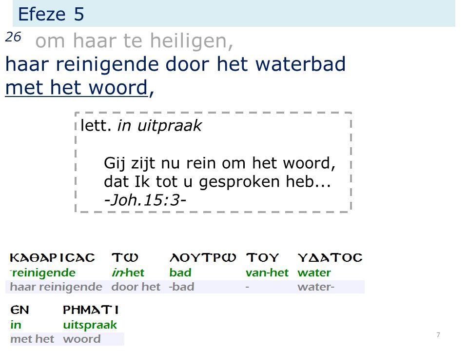 Efeze 5 26 om haar te heiligen, haar reinigende door het waterbad met het woord, lett.