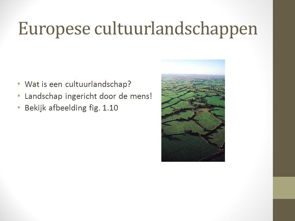 Europese cultuurlandschappen Wat is een cultuurlandschap.