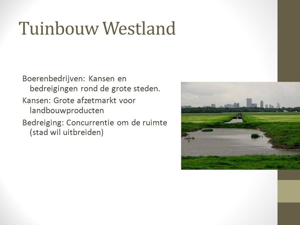 Tuinbouw Westland Boerenbedrijven: Kansen en bedreigingen rond de grote steden.