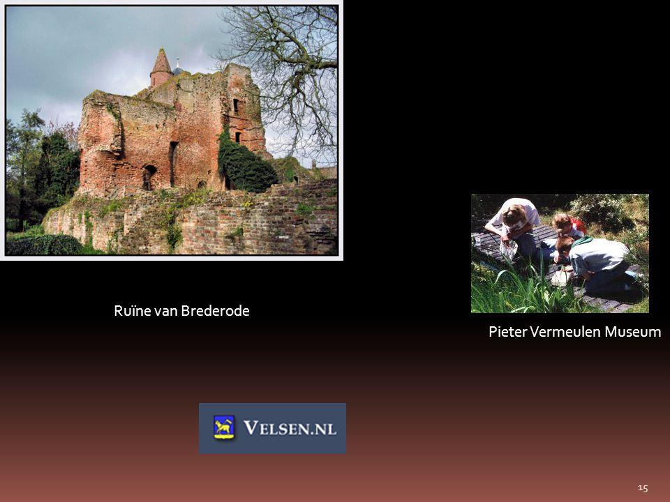 15 Ruïne van Brederode Pieter Vermeulen Museum