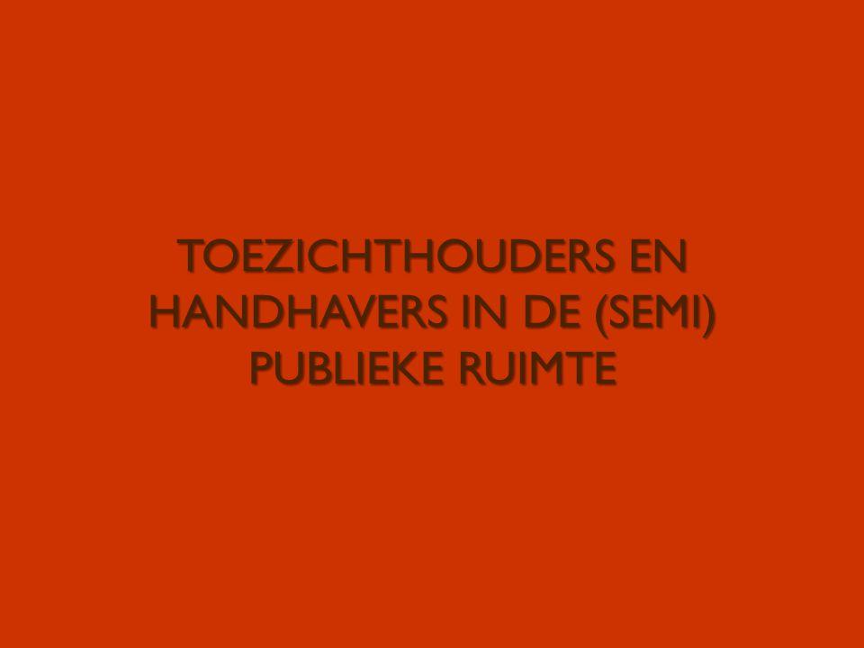 TOEZICHTHOUDERS EN HANDHAVERS IN DE (SEMI) PUBLIEKE RUIMTE