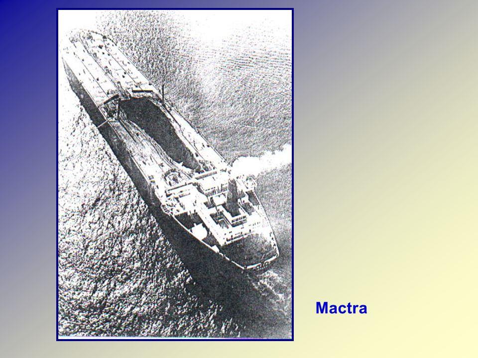 Mactra
