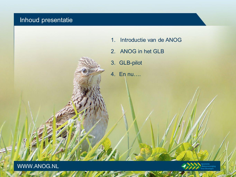 Introductie van de ANOG De Agrarische Natuurvereniging Oost Groningen (ANOG) een vereniging: opgericht in 2003 een doel: het ondersteunen en ontwikkelen van agrarisch natuurbeheer in Oost Groningen veel leden, agrariers inmiddels ruim 300 groot in oppervlakte, 7 gemeenten en circa 120.000 ha.