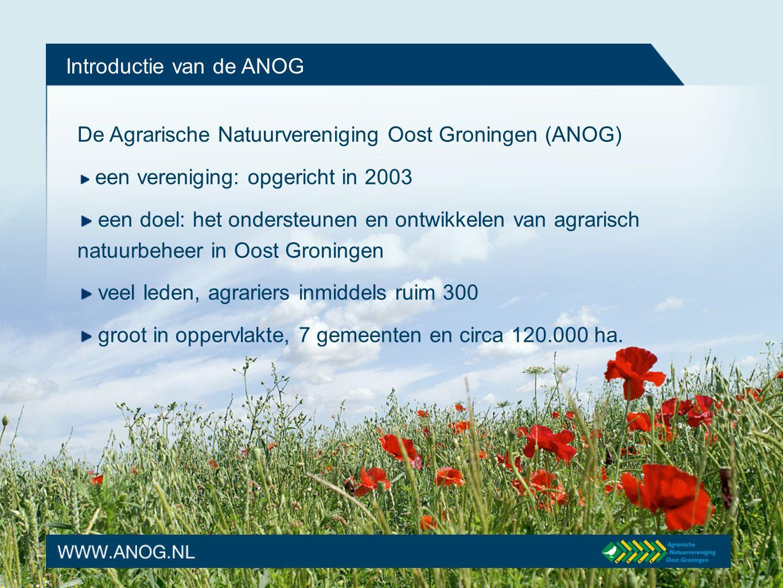 Introductie van de ANOG De Agrarische Natuurvereniging Oost Groningen (ANOG) een vereniging: opgericht in 2003 een doel: het ondersteunen en ontwikkel