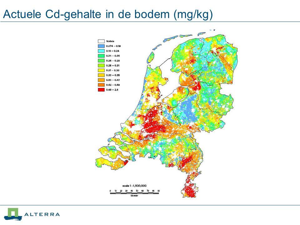 Actuele Cd-gehalte in de bodem (mg/kg)