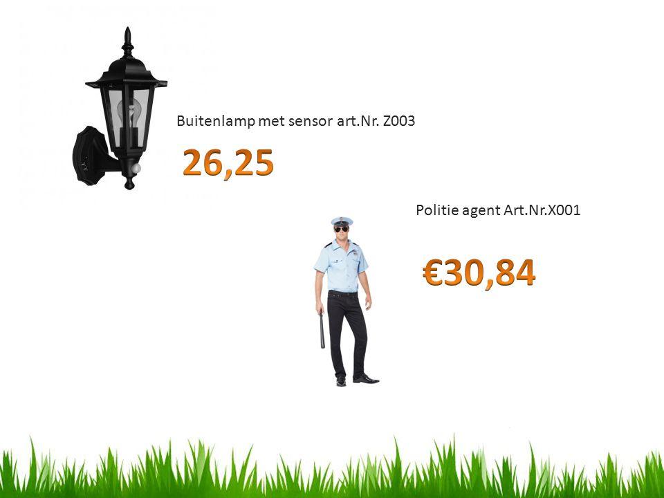 Buitenlamp met sensor art.Nr. Z003 Politie agent Art.Nr.X001