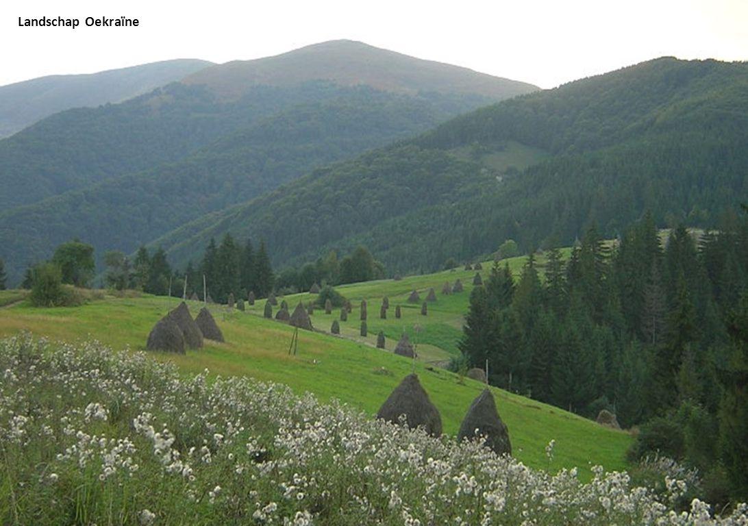 Landschap Oekraïne