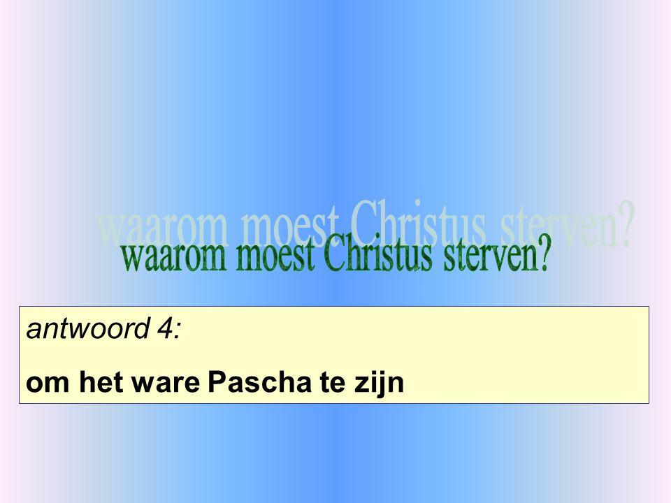 antwoord 4: om het ware Pascha te zijn