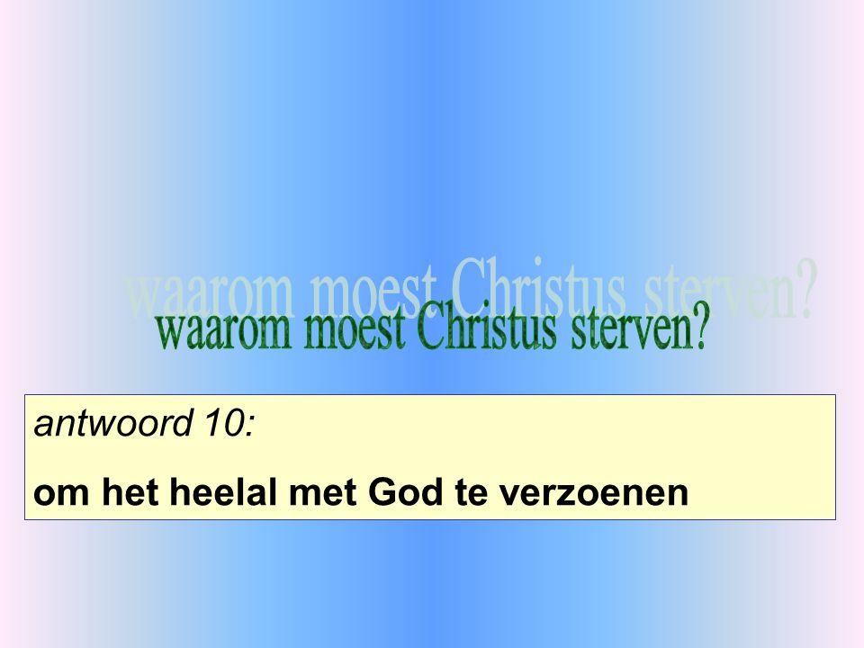antwoord 10: om het heelal met God te verzoenen