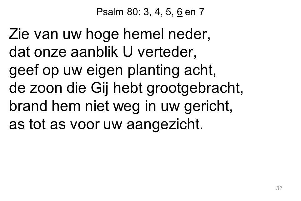 37 Psalm 80: 3, 4, 5, 6 en 7 Zie van uw hoge hemel neder, dat onze aanblik U verteder, geef op uw eigen planting acht, de zoon die Gij hebt grootgebracht, brand hem niet weg in uw gericht, as tot as voor uw aangezicht.