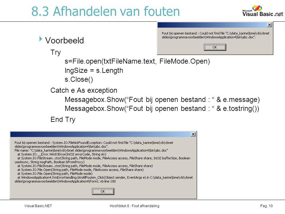 Hoofdstuk 8 : Fout afhandelingVisual Basic.NETPag.