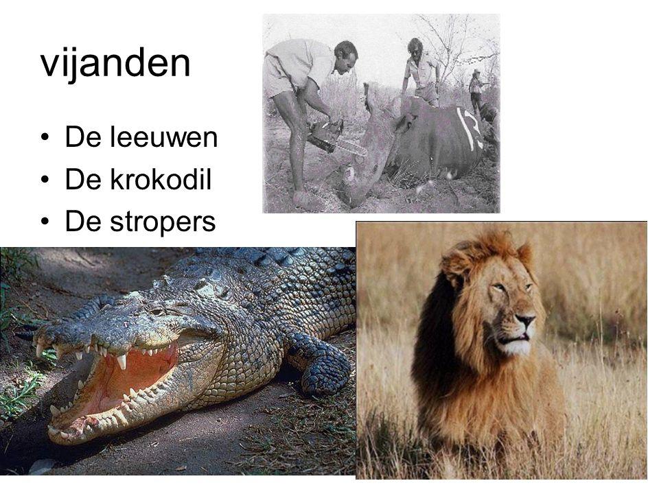 vijanden De leeuwen De krokodil De stropers