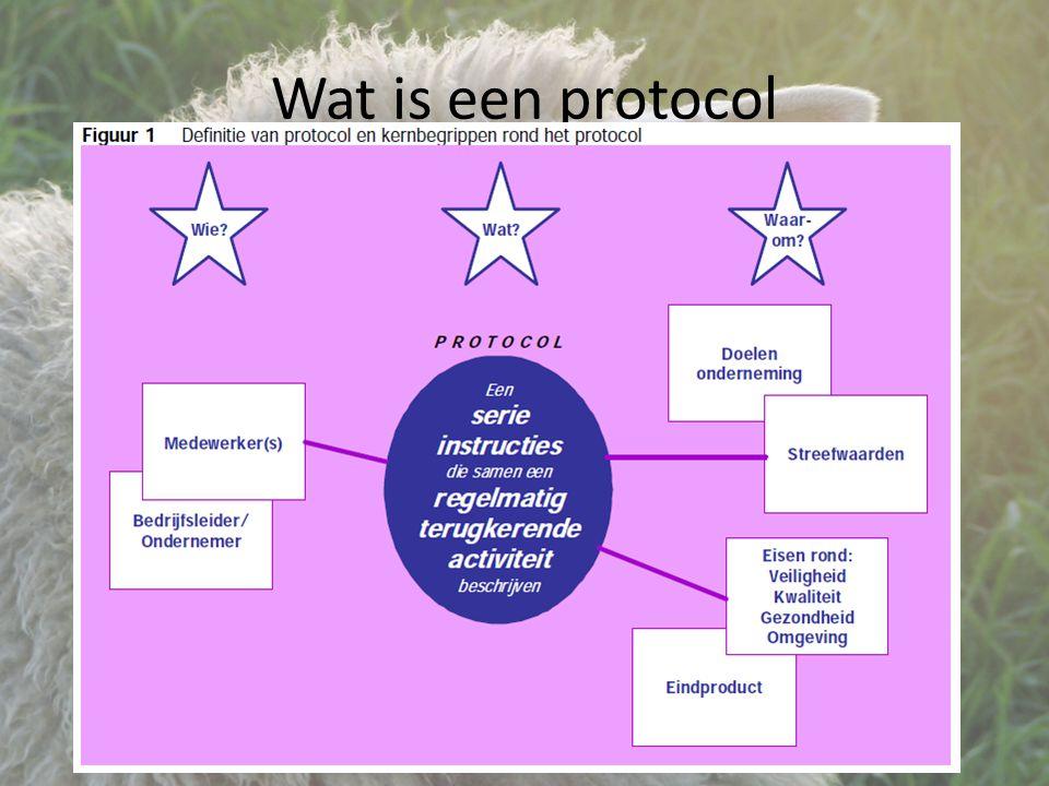 Wat is een protocol