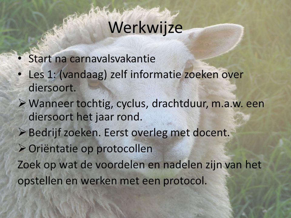 Werkwijze Start na carnavalsvakantie Les 1: (vandaag) zelf informatie zoeken over diersoort.
