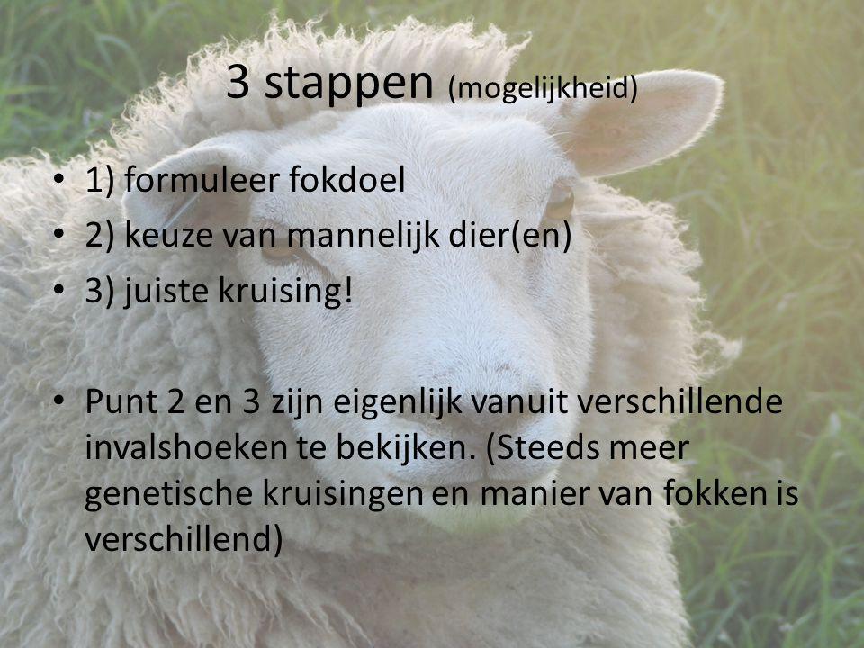 3 stappen (mogelijkheid) 1) formuleer fokdoel 2) keuze van mannelijk dier(en) 3) juiste kruising.