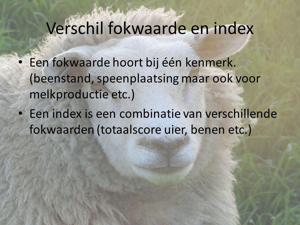 Verschil fokwaarde en index Een fokwaarde hoort bij één kenmerk.