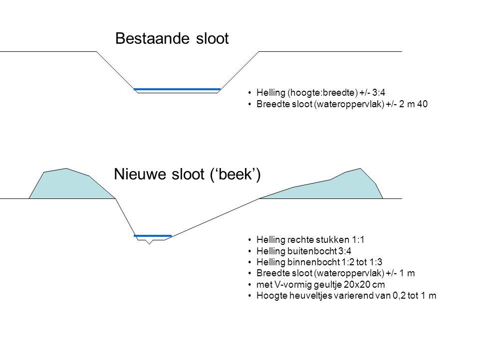 Bestaande sloot Nieuwe sloot ('beek') Helling (hoogte:breedte) +/- 3:4 Breedte sloot (wateroppervlak) +/- 2 m 40 Helling rechte stukken 1:1 Helling bu