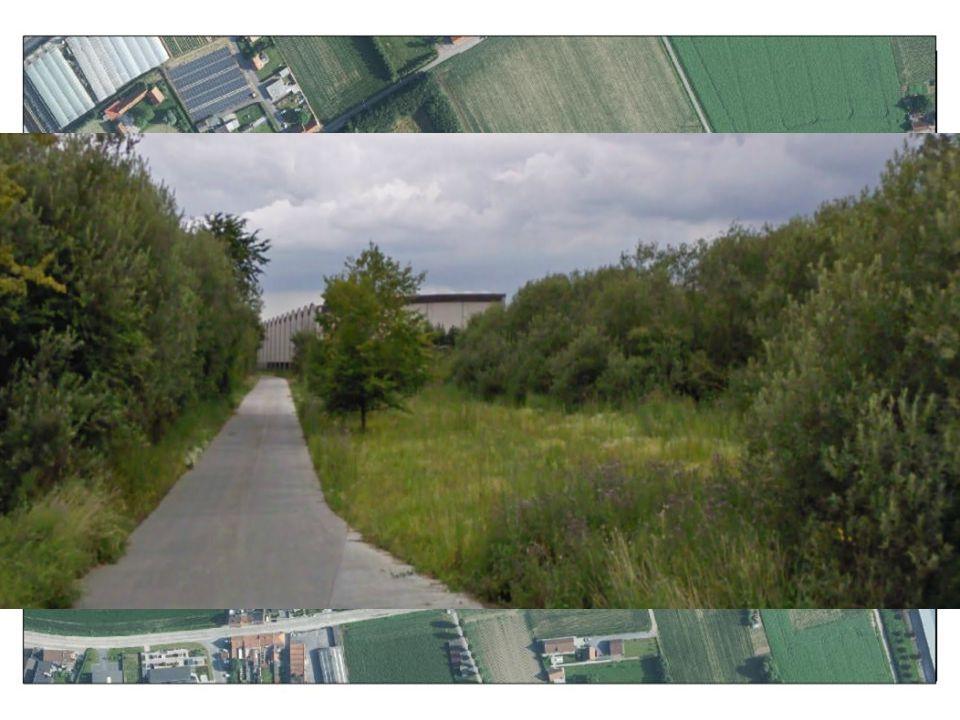 3. Geen grote projecten nodig om wat voor de natuur te betekenen Vandewiele, Wervik: Rietvelden als zuivering met robuuste groenschermen