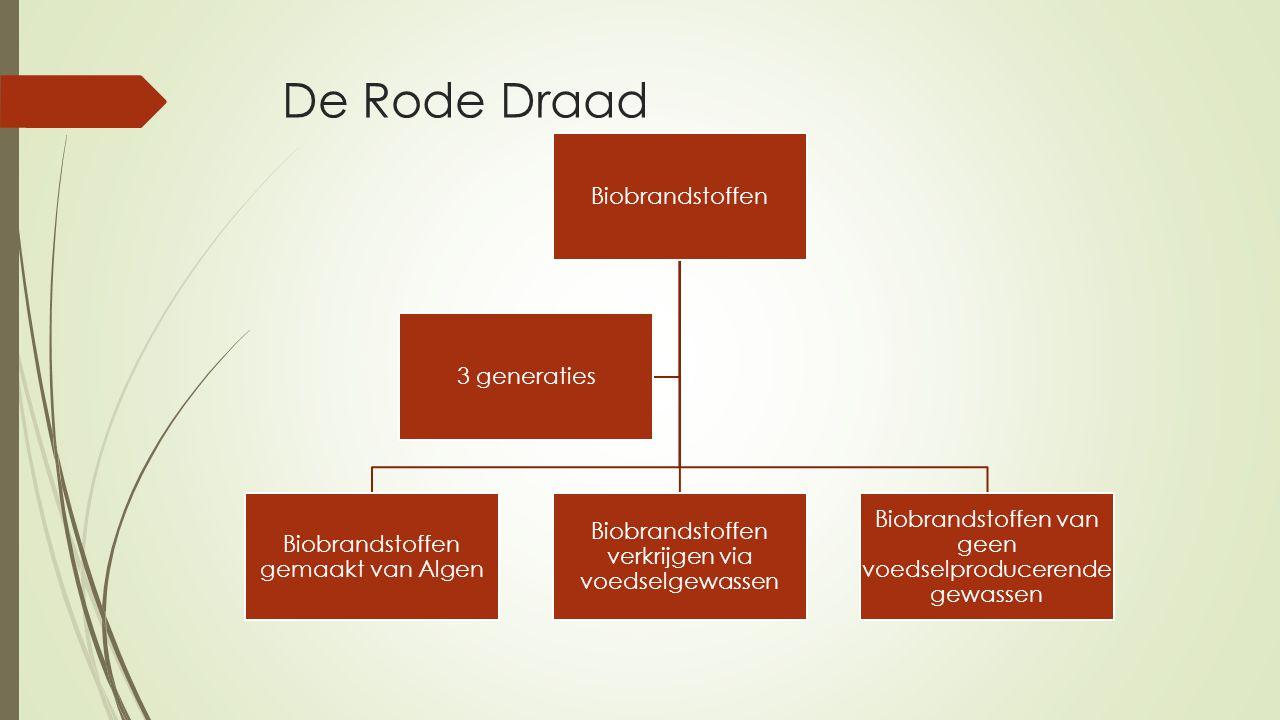 De Rode Draad Biobrandstoffen Biobrandstoffen gemaakt van Algen Biobrandstoffen verkrijgen via voedselgewassen Biobrandstoffen van geen voedselproducerende gewassen 3 generaties