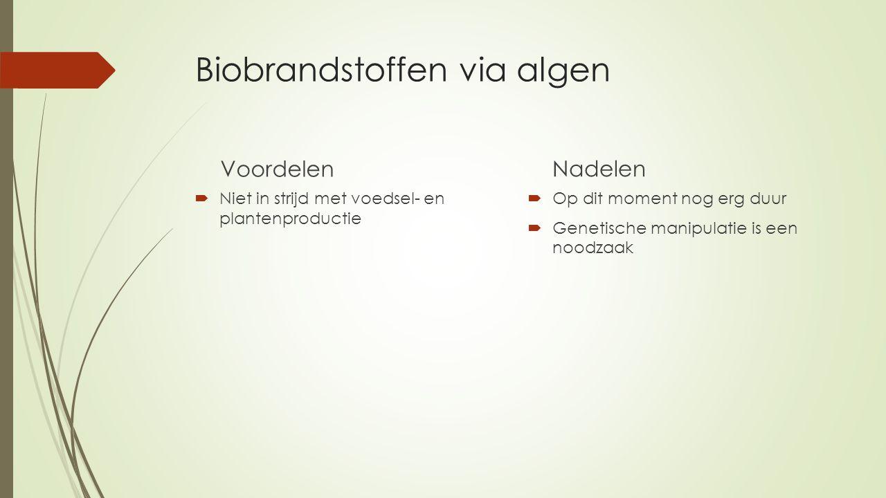 Biobrandstoffen via algen Voordelen  Niet in strijd met voedsel- en plantenproductie Nadelen  Op dit moment nog erg duur  Genetische manipulatie is een noodzaak