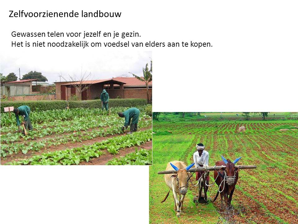 Zelfvoorzienende landbouw Gewassen telen voor jezelf en je gezin.