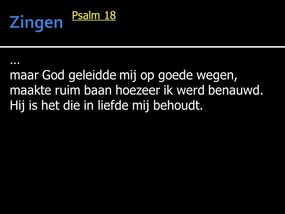 Vers 6 De HEER heeft mij vergolden naar mijn daden, omdat ik nooit geheuld heb met het kwade, omdat ik steeds zijn wegen ben gegaan, omdat ik naar zijn wetten heb gedaan.