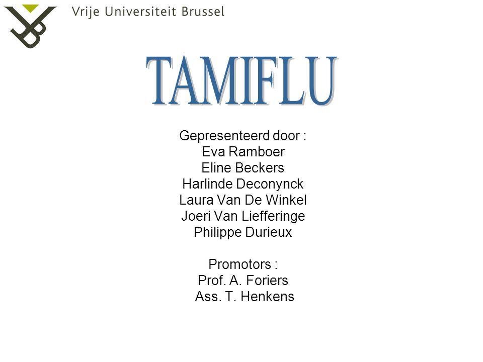 Gepresenteerd door : Eva Ramboer Eline Beckers Harlinde Deconynck Laura Van De Winkel Joeri Van Liefferinge Philippe Durieux Promotors : Prof.