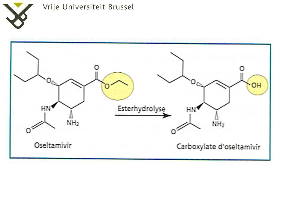 3. Strijd tegen griepvirus  Neuraminidase remmer Oseltamivircarboxylaat Neuraminidase eiwit