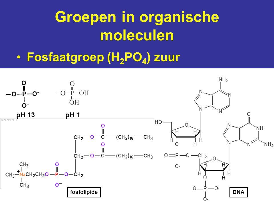 Groepen in organische moleculen Aminogroep base Carboxylgroep zuur